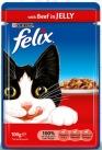 wet food cats